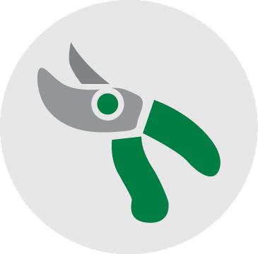 Vegetation Removal Icon