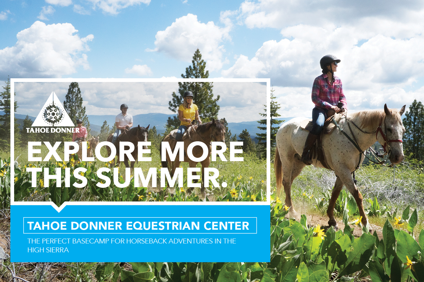 SummerCampaign_Equestrian_WebPage_1382x922 v1 image