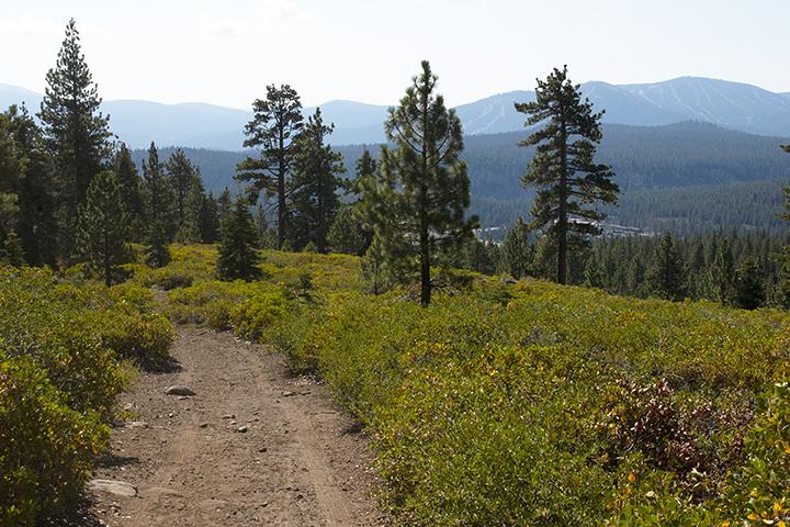 McGlashan Springs trail