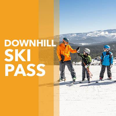 Downhill Ski Pass Button