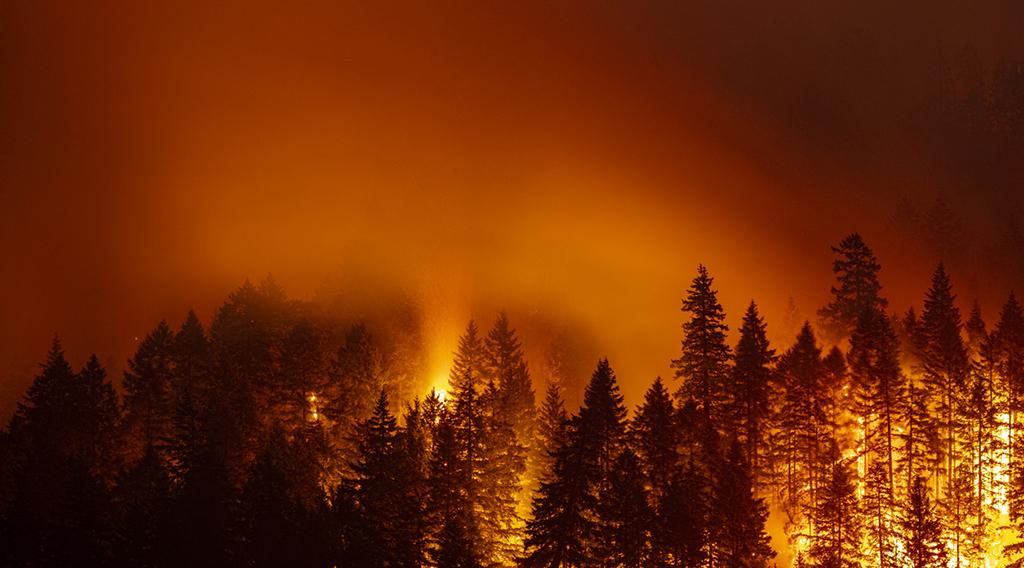 Emergency Preparedness Notifications + Evacuations
